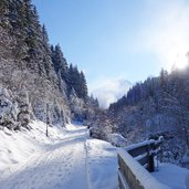 axamer talweg winter