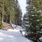 D-2304-waldraster-rundweg-winter.jpg