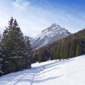 D-2316-waldraster-rundweg-winter.jpg