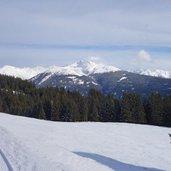 D-2317-waldraster-rundweg-winter.jpg