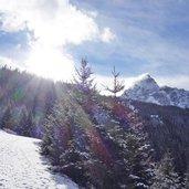 D-2378-landschaft-um-waldraster-joechl-mit-serles-winter-nebel-fr1.jpg